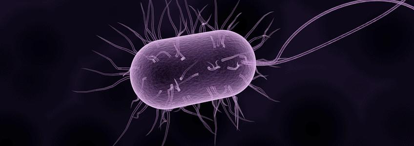 Filtracja wody z lampą bakteriobójczą